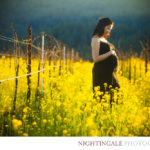 Maternity-photos-bay-area