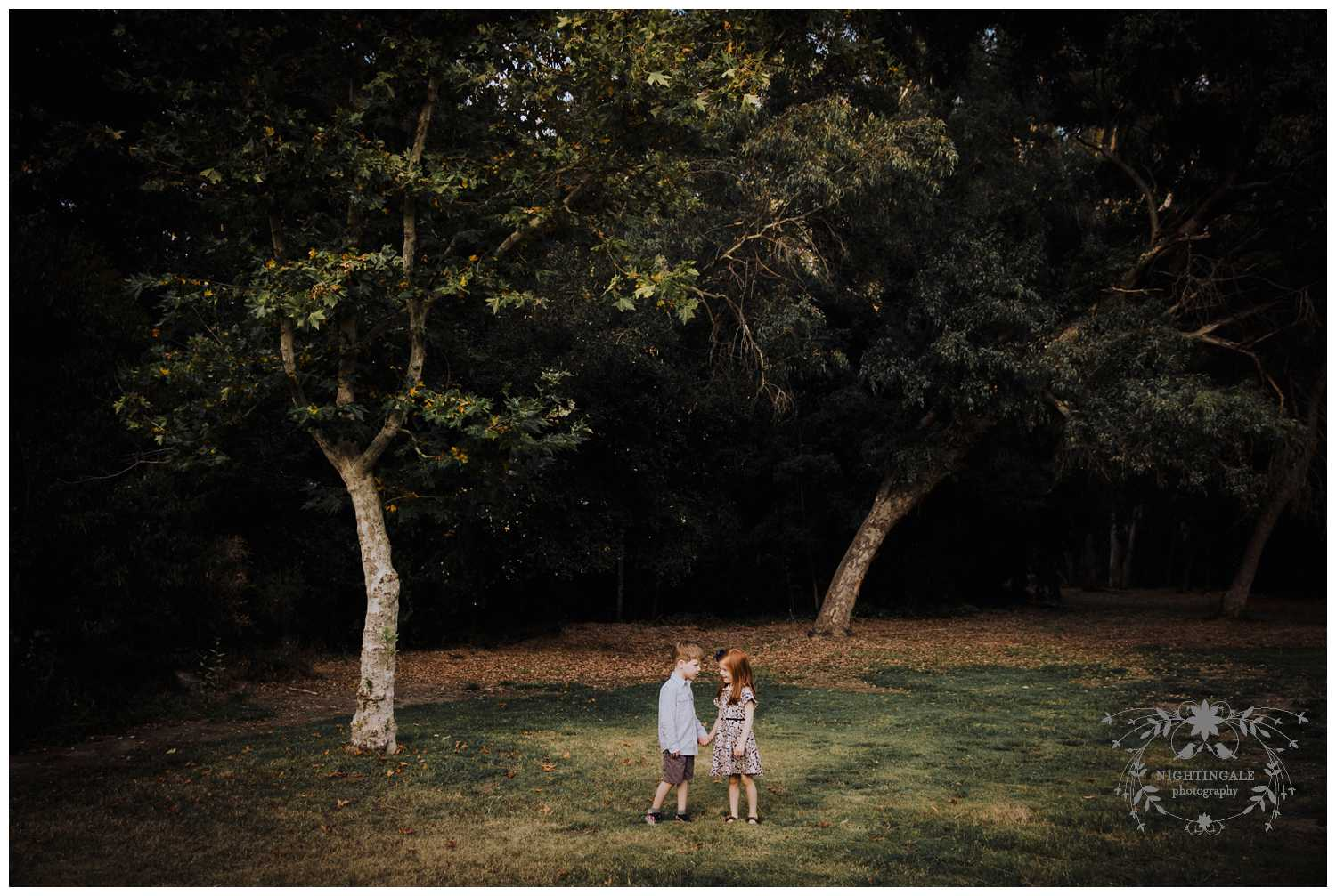 Los Gatos Family Portraits001