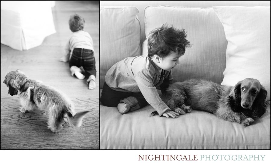 San-Francisco-Family-Portraits
